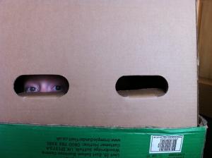 Child hiding in a box, peeking out through a handle hole